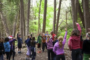 kids_learning in the forest-alt-sm